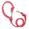 hundeleine rosa Kletterseil