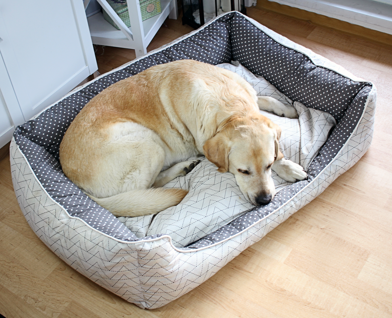 n hanleitung hundebett n hen ikarusdoodle hundeleinen. Black Bedroom Furniture Sets. Home Design Ideas