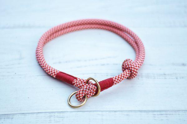 kletterseil-hundehalsband-orange-hund-zugstopp-halsband