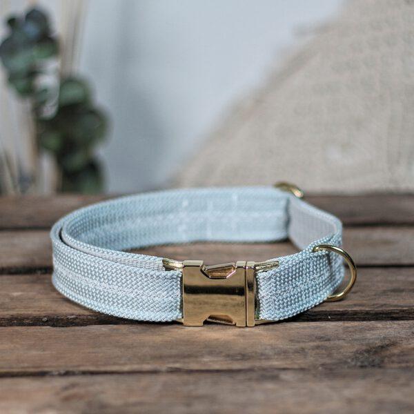 hundehalsband-halsband-grau-hellgrau