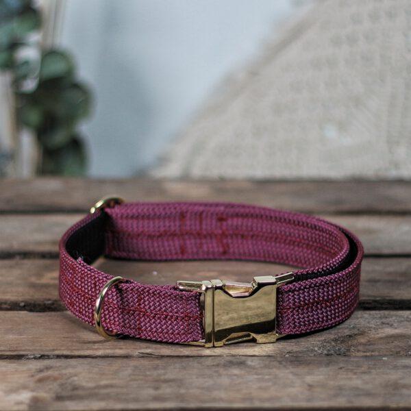 hundehalsband-halsband-weinrot-aubergine-pflaume
