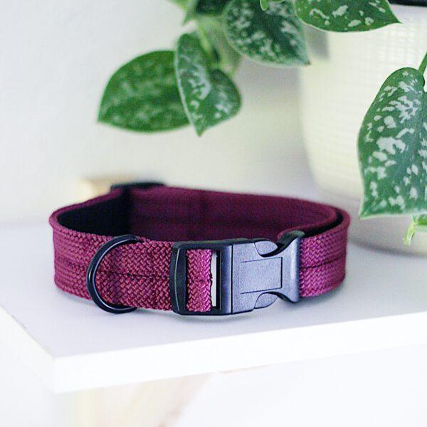 kletterseil-halsband-lila-aubergine-pflaume-steckschnalle
