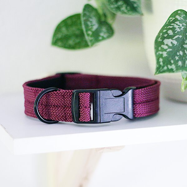 kletterseil-halsband-lila-aubergine-pflaume-verstellbar