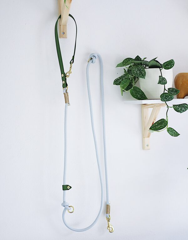 biothane Hundeleine grün hellgrau